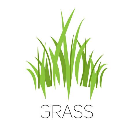 A green logo grass. Illustration