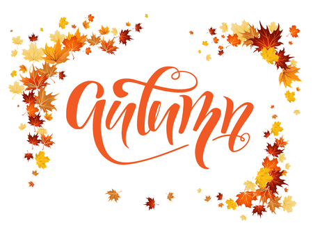 Fall leaves decoration set for design banner, ticket, leaflet, card, poster and so on. Illustration