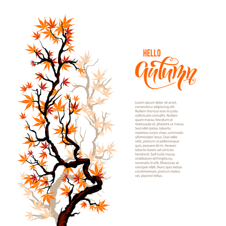 Autumn branch blank Illustration