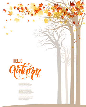 Autumn trees banner.
