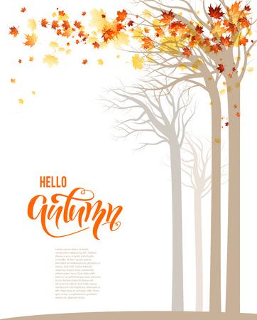 Autumn trees banner.