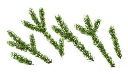 Christmas trees element Stock Photo