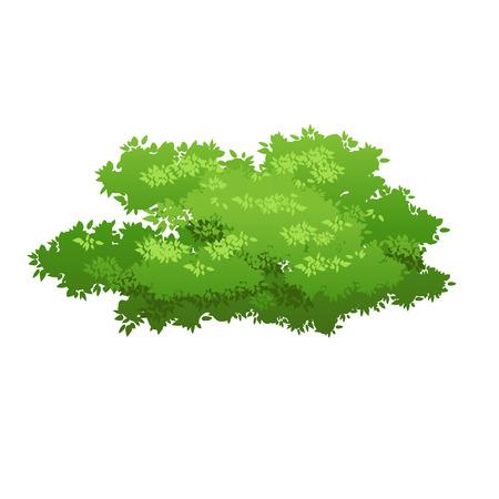 Green bush image illustration.