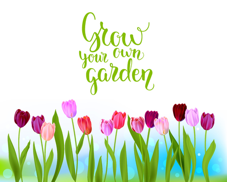 Tulip spring banner Vector illustration.
