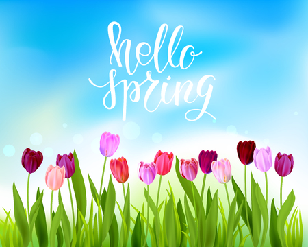 hello spring banner with tulips flowers Vector illustration. 矢量图像