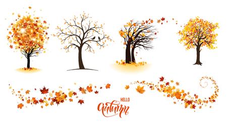 Bäume und Blätter