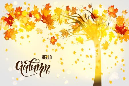 Fall tree background Stock Photo