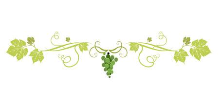 Spezzatrice per uva verde Vettoriali