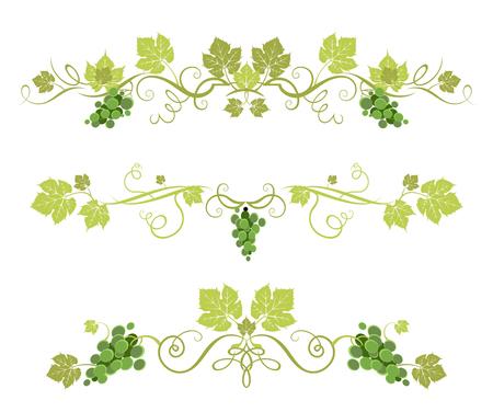 Décor de raisin vert