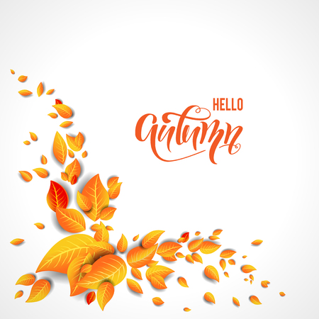 Bright autumn leaves decor on white background. Autumn vector illustration for design banner, ticket, leaflet, card, poster and so on