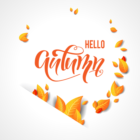 Bright fall leaves background Stockfoto