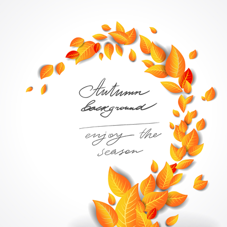 Yellow bright leaves background Stock Photo