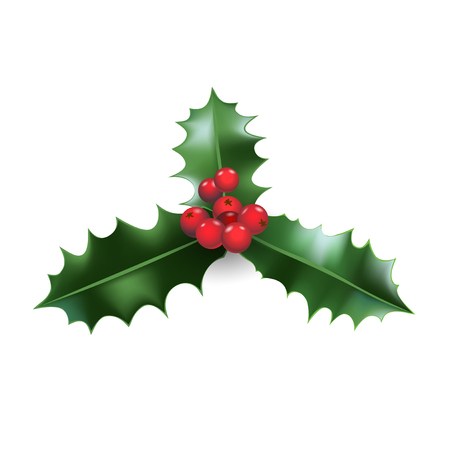 Christmas festive holly decoration. Holiday nature symbol for design banner, ticket, poster, invitation or card, leaflet and so on. Stock Illustratie
