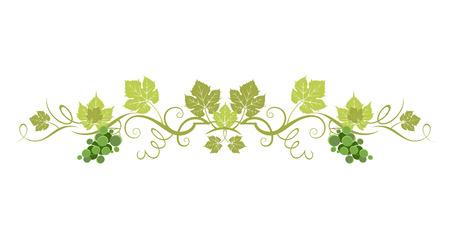 Green organic border