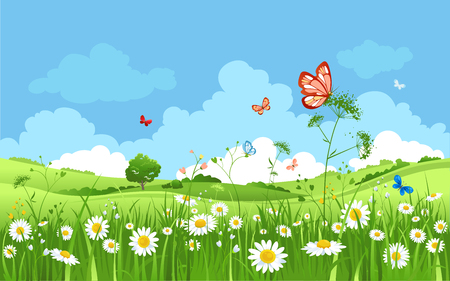 Summer or spring landscape for design banner, ticket, leaflet, card, poster and so on. Green grass, blue sky and flowers scenery.