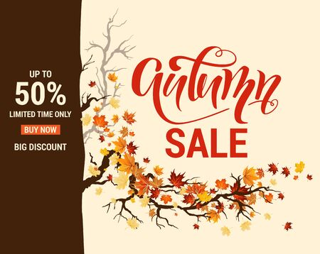 Autumn leaves and branches sale template. Nature design background. Fall maple leaves advertising banner.