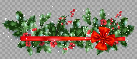 Winter flat lay Christmas holiday banner. Top view of nature design elements. Holly and ribbon on transparent background for holiday design.