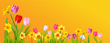 Holiday spring yellow banner Vectores