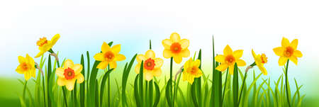 Holiday decor blossom banner with daffodils and grass.