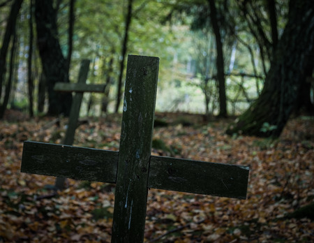 forgotten: Wooden crosses in forgotten graveyard. Stock Photo