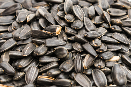 sunflower seed: organic sunflower seed for background uses. Stock Photo