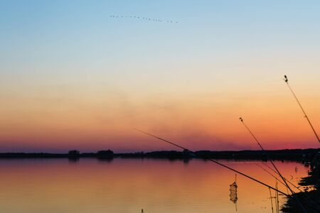 spinning reel: spinning with reel and evening summer lake.