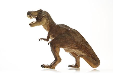 dinosauro: Isolato dinosauro su sfondo bianco