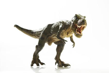 tyrannosaurus rex: Dinosaurio aislado en el fondo blanco