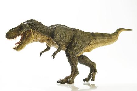 Geïsoleerd dinosaurus op witte achtergrond