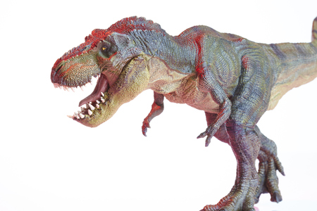 Isolated dinosaur model on white background