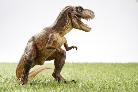 Nahaufnahme isoliert Dinosaurier auf Gras Hintergrund Lizenzfreie Bilder