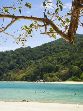 Tropical beach at summer in Koh surin Thailand