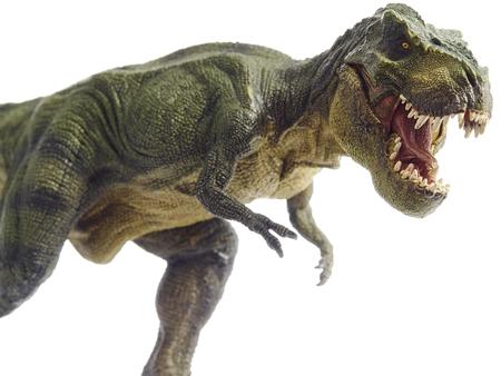 dinosaurio: Dinosaurio aislado y el modelo monstruo en blanco