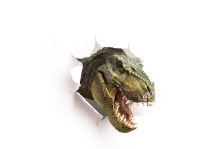dinosauro: vicino dinosauro attraverso la parete di carta