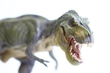 shooting dinosaur model on white background Stock Photo