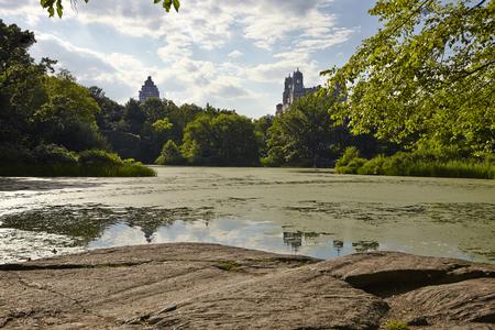 city park skyline: New York City Central Park with Manhattan skyline skyscrapers and blue sky with  lake.