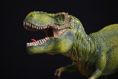 dinosaurio: Dinosaurio aislado en el fondo negro