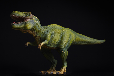 Isolated dinosaur on black background
