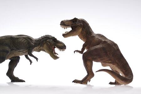 dinosauro: Dinosaur Close Up - Dinosauri in sfondo bianco