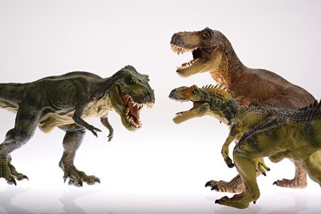 strive: Isolated dinosaurs are fighting on white background Stock Photo
