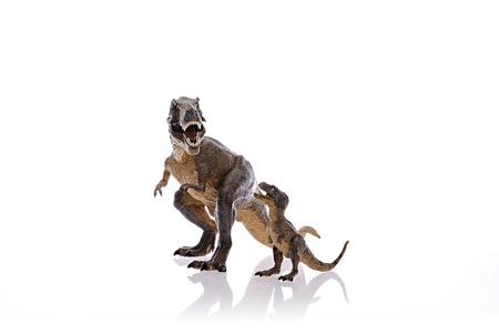 Isoliert Dinosaurier auf wei�em Hintergrund k�mpfen Lizenzfreie Bilder