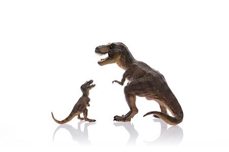 dinosaurio: Dinosaurios aislados están luchando en el fondo blanco