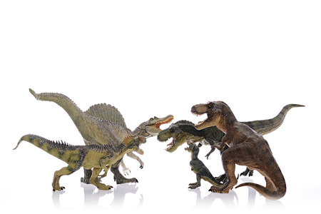 intensely: Isolated dinosaurs are fighting on white background Stock Photo