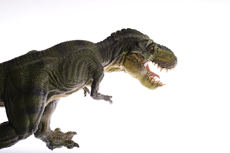 ardently: Isolated dinosaurs are fighting on white background Stock Photo