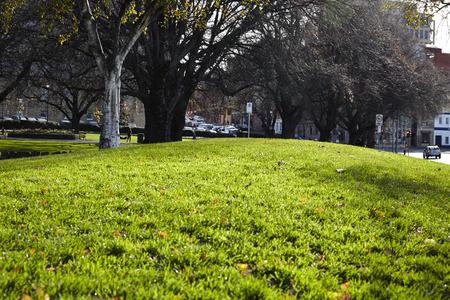 Green Fields, Australia, Tasmania