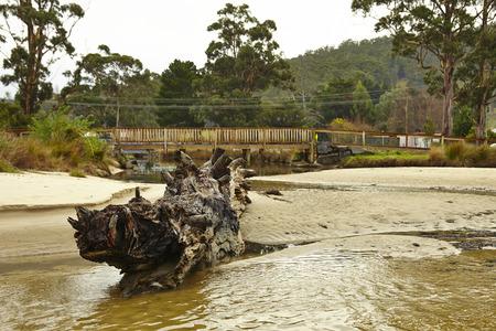 tasmania: Landscape in australia, Tasmania