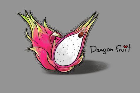 dragon fruit: watercolor vegetarian food, painting dragon fruit. Photo art Stock Photo