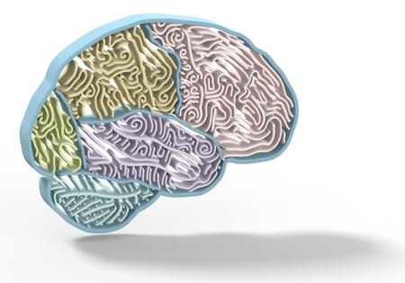 metaphors: Colorful a brain shape maze, metaphors. 3D render photo
