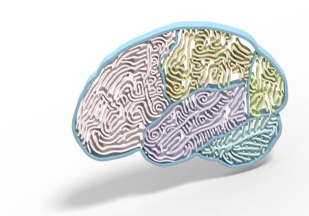 brain shape: Colorful a brain shape maze, metaphors. 3D render photo