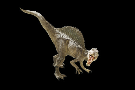 dinosaur on black  background